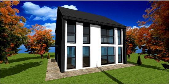 Maison Bois Moderne Zinc & White