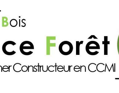 logo maisons france foret constructeur architecte maison bardage et ossature bois en ile de france